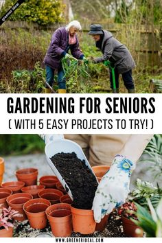 Did you know gardening benefits seniors' mental and physical health? It can also help your loved ones feel more connected to the outdoors, appreciate nature, and provide them with a sense of accomplishment when they harvest vegetables or flowers from their garden, and allow them to socialize with friends who are also gardening nearby. If you're ready to get started, here are 5 Easy Gardening Projects for Seniors. #gardening #gardeningtips #seniors #projects #gardeningprojects #greenliving Benefits Of Gardening, Gardening Tips, Easy Projects, Garden Projects, Green Living Tips, Homestead Gardens, Cold Frame, Easy Garden, Types Of Flowers