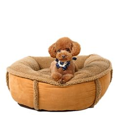 Pet Teddy Gold Can Be Fully Removable and Washable Gray Dog Nest Wool Lamb Large Dogs Comfortable Dog Pads Brown