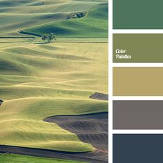 Color Palette  #3834