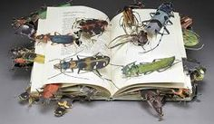 Image result for books art