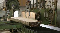 Sierra principal o de carro | Manual Técnico de formación para la caracterización de madera de uso estructural