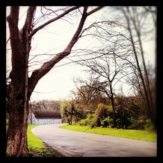 O'Neil Woods Metro Park, Photo by tamikeehn