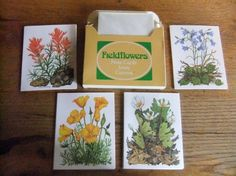 Vintage Fieldflowers Note Cards Stationery Full Box by Isisgoodsny