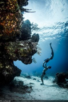 World record-holding freediver William Trubridge with Sachiko Fukumoto Getting Creative Photographing Freedivers by Lia Barrett Underwater Photos, Underwater Photography, Nature Photography, Ocean Underwater, Photography Poses, Adventure Photography, Couple Photography, Landscape Photography, Travel Photography