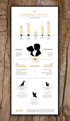 Lovely infographic. THE DADAMIS FAMILY / 2013 IN REVIEW