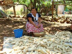 mujer y maíz