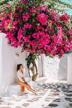 The Ultimate Greece Travel Guide - Santorini & Mykonos / Trendy Travel Photos. Girls Who travel. Santorini Travel, Santorini Greece, Greece Travel, Travel Pictures, Travel Photos, Couple Travel, Travel Style, Travel Fashion, Travel Guide