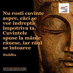 Un gand pe zi ! Spiritual Life, Famous Quotes, Mantra, Cool Words, Meditation, Boss, Spirituality, Sad, Awesome