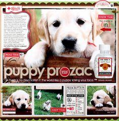 {puppy prozac} by Candice Greenway @2peasinabucket
