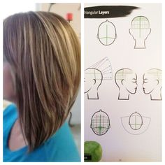 TRIANGULAR LAYERS. Section hair into four part sections Beginning with the back panels, take vertical sections beginning at the nape, and elevate the hair 90 degrees from the head with backwards over direction. Continue to the top panels taking vertical sections with backward over direction and 90 degree elevation. Follow your traveling guide. **This image shows a triangular one length with triangular layers combination.