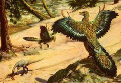 Archeopteryx by Zdenek Burian - 1955