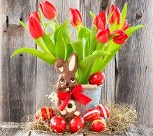 Обои Тюльпаны Праздники Пасха Шоколад Кролики Красный Яйца Бантик Цветы
