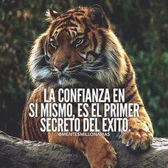 La imagen puede contener: meme y texto Tiger Quotes, Lion Quotes, Me Quotes, Qoutes, Motivational Quotes, Inspirational Quotes, Wolf Quotes, Courage Quotes, Strength Quotes
