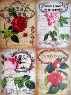 Rice Paper for Decoupage  Decopatch Sheet Scrapbooking Craft Wild Roses