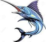 skeleton drawing of a blue marlin fish - Google Search