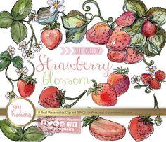Strawberry 🍓 lovely clipart !https://www.etsy.com/mx/listing/199573374/fresas-flores-fresitas-acuarela-clip-art #fresas #strawberry #illustratedbook #openbooking #watercolour #womensdaysale