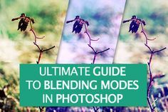Ultimate Guide To Blending Modes in #Photoshop http://photodoto.com/how-to-master-blending-modes-in-photoshop/ #tutorial,