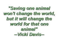 Save the Animals Quote