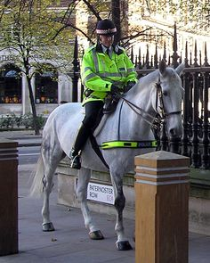 London Mounted Police - police horse