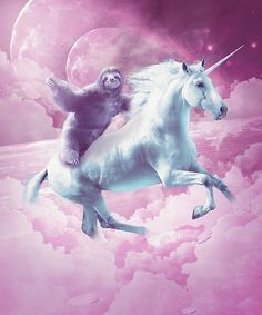 Grumpy Cat A Sloth Riding A Unicorn And A Light Saber