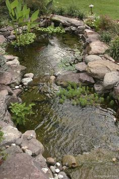 Lookalike our pond, we're going to add more rocks and Lily pads this weekend
