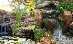 Fotos de cascadas de jardín