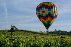 Hot air ballooning in Napa Bay - Things to do in San Francisco Weekend In San Francisco, San Francisco Travel Guide, Yosemite National Park, National Parks, Golden Gate Park, Unusual Things, California Travel, Bay Area, Travel Inspiration