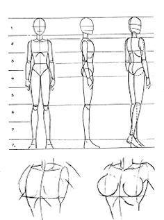 Mangaka World : A anatomia do corpo