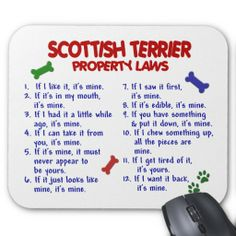Scottish Terrier Lovers T-Shirts, Scottish Terrier Lovers Gifts ...