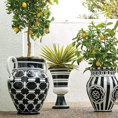 Our Blue and White Painted Planters are an indulgence in ornate foliage, exotic birds and ceramic tile designed artistry. Constructed of durable, weat… - All For Garden Outdoor Garden Furniture, Outdoor Planters, Outdoor Decor, Lawn And Garden, Garden Pots, Pot Jardin, White Planters, Large Planters, Bright Flowers