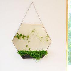 Hexagon mirror & terrarium  Modern home decoration  Large