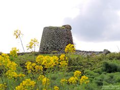 Nuraghe Succoronis by Francesca Murroni Ph on 500px