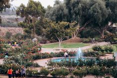 Visit California, California Travel, Lily Pond, Lush Garden, Free Things To Do, Exotic Plants, City Break, Best Cities, Travel Images