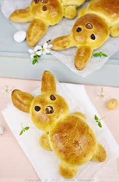 Easter Bunny Brioche By Craft Gossip