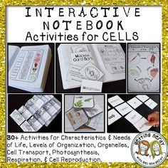 Over 30+ Interactive Notebook activities for Cell Organelles and Cell Processes