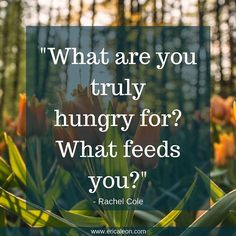 #Emotional eating is often about feeding something other than physical hunger! #Dieting also puts us in a place of restriction, and we end up being starved in ways that are both physical and mental.