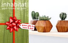 Image result for eco.friendly gifts