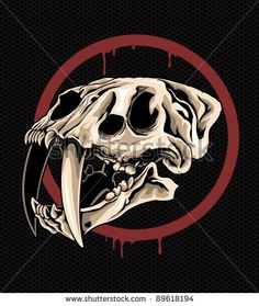 sabre tooth tiger skull - Google Search
