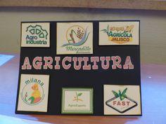 Agricultura. Aspectos económicos.