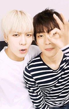 JinSon Wang puppy and prince Jinyoung