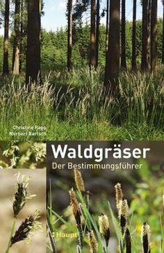 Rapp, Christine / Bartsch, Norbert «Waldgräser. Der Bestimmungsführer» | 978-3-258-07957-8 | www.haupt.ch