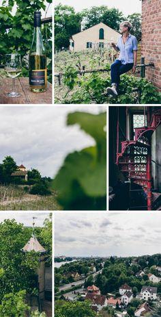 Das Weingut Dahms auf der Peterstirn in Schweinfurt