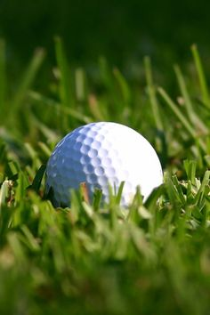 Attending the Golf Masters Tournament is a long-time fantasy for many professional golfers and fans alike. The Masters Tournament is one of the biggest ev Golf Images, Golf Pictures, Kids Golf, Play Golf, Ryder Cup 2018, Masters Tournament, 4 Wallpaper, Golf Art, Golf Photography