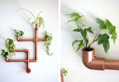 DIY copper pipe wall planter brings metallic glitz and green to your home - Decoist Diy Plants, Planters, Copper, Metal, Wall, Green, Indoor Plants, The Originals, Planter Boxes