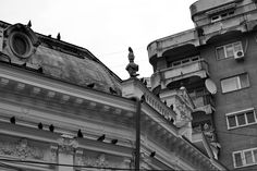 Charming Bucharest: Birds & buildings Artistic Photography, Romania, Monochrome, Buildings, Louvre, Birds, Charmed, Travel, Bucharest