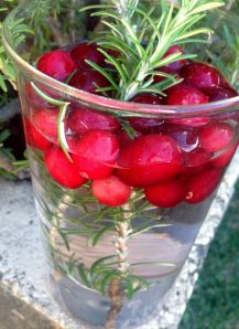 cranberry and rosemary water