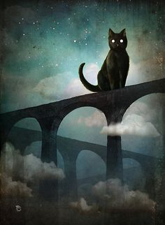 Into the Night by ChristianSchloe
