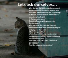Chemtrails Are Just The Start: 5 More Things We Should Ask Ourselves #CATS