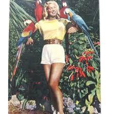 """Résultat de recherche d'images pour """"parrot jungle vintage"""""""