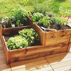 carr potager pour herbes aromatiques castorama urban. Black Bedroom Furniture Sets. Home Design Ideas